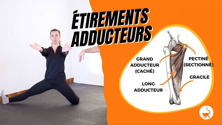 stretchingpro-etirements-adducteurs-exercices