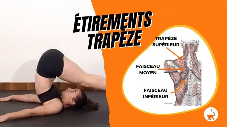 stretchingpro-etirements-trapeze-exercices