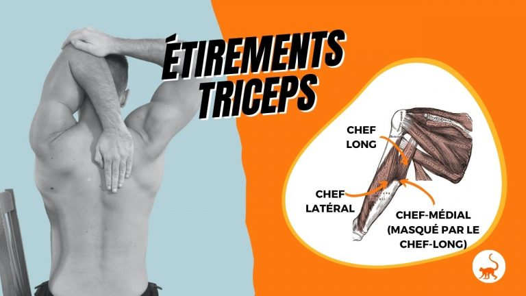 stretchingpro-etirements-triceps-exercices