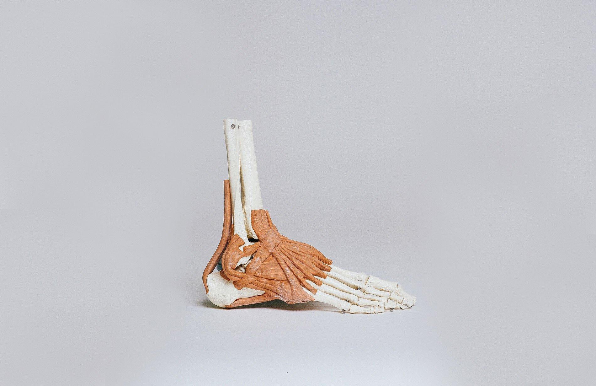 stretchingpro-etirements-chevilles
