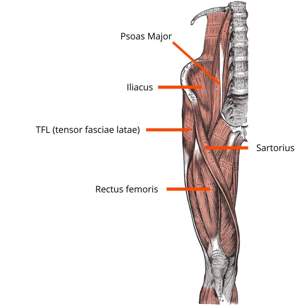 stretchingpro-muscles-flechisseurs-hanche