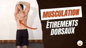 stretchingpro-etirement-dorsaux-musculation-exercices