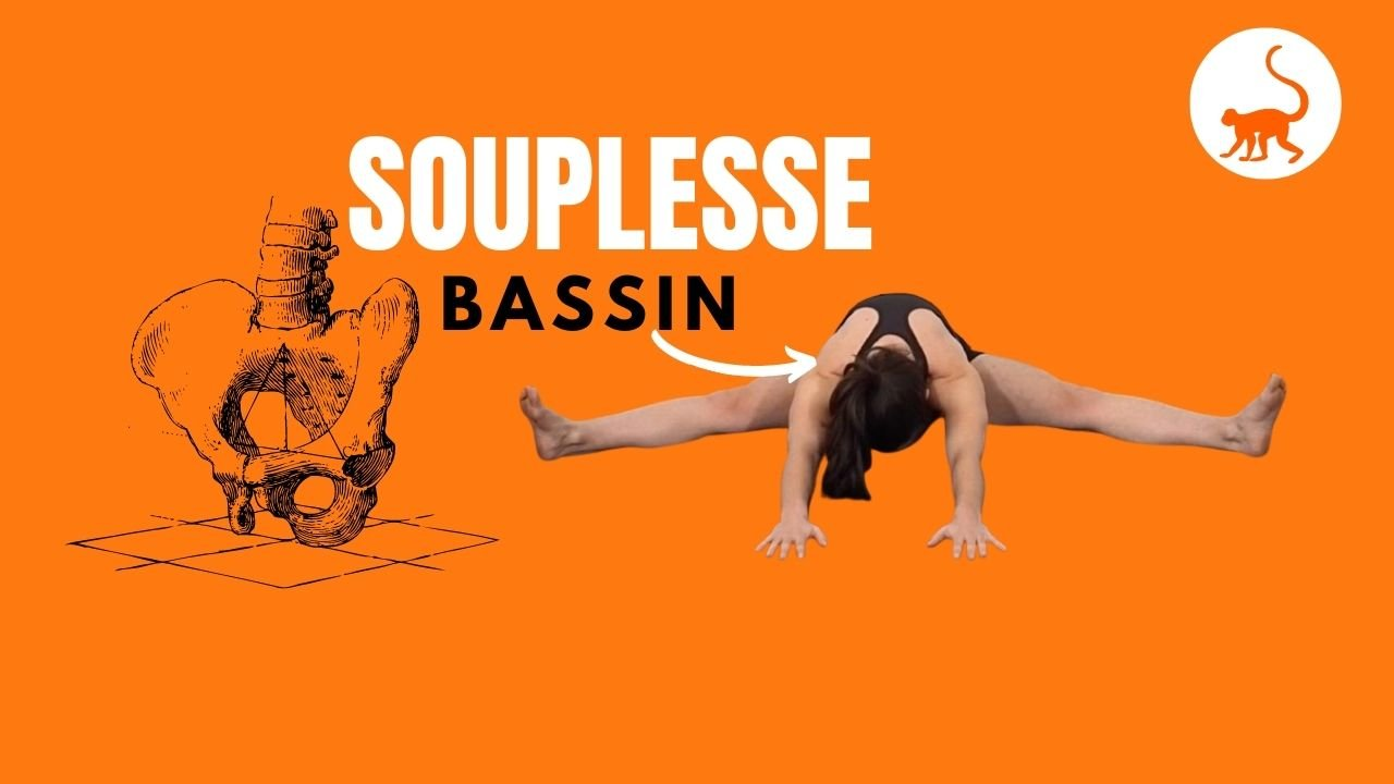 stretchingpro-souplesse-bassin-exercices