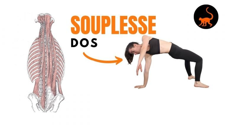 stretchingpro-souplesse-dos-exercices