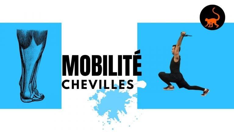 stretchingpro-mobilité-cheville