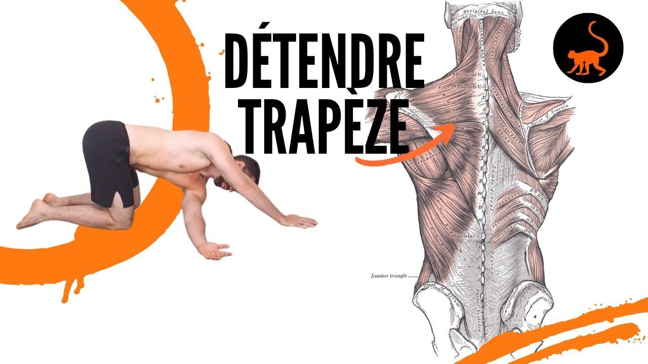stretchingpro-detendre-trapeze